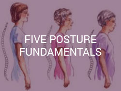 Five Posture Fundamentals